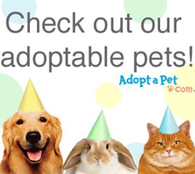 adopt-a-pet logo